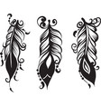set of three drawing of feathers vector image