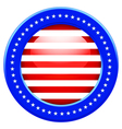 USA button vector image vector image