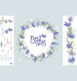 wild flowers hepatica floral elements for your vector image vector image