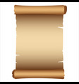 ancient scroll vector image vector image