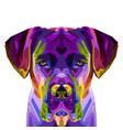 colorful cane corso dog on pop art style vector image vector image