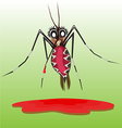 common house mosquito vector image