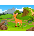funny deer cartoon in the jungle vector image vector image