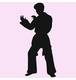 karate man vector image