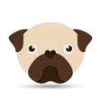 lovely head puppy pug dog vector image vector image