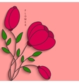 modern flowers background for invitation vector image vector image