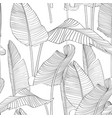 seamless pattern with line bananas leaves vector image vector image