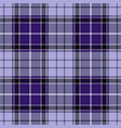 violet tartan plaid seamless pattern vector image vector image