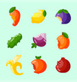 bitten fruits vitamin food and vegetable vector image vector image