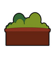 bush in a pot vector image vector image