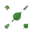 flat icon natural set of linden tree hickory and vector image vector image