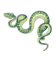 hand drawn green spotted snake vector image vector image