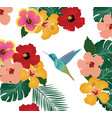 hummingbird floral background vector image vector image
