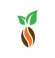 kakao chocolate logo image vector image