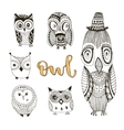 set of cute doodle owls Birds isolated vector image