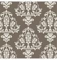 Vintage Damask Elegant Classic ornament pattern vector image vector image