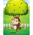 A smiling young monkey near the fence with a tree vector image vector image