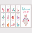 calendar 2020 with cute llamas colorful alpacas vector image vector image