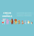 circus with animals music banner poster design vector image