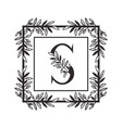 letter s alphabet with vintage style frame