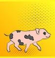 pop art background pig pet mini pig of a vector image