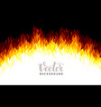 realistic fire flames on black background vector image vector image