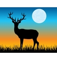 Silhouette of the deer on glade vector image vector image