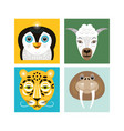 animals faces vector image