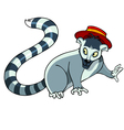 Cartoon raccoon in a hat vector image