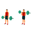 fitness exercises for strong and beautiful body vector image vector image