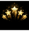 five gold stars vector image