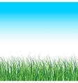 grass landscape nature background