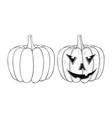 halloween pumpkin outline hand drawn sketch vector image