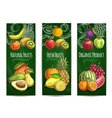 Organic fresh juicy fruits sketch poster vector image