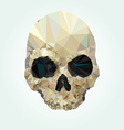skull low poly vector image