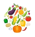 Vegetables Colored Icons Flat Set vector image