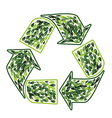 recycling sign with leaves vector image