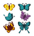 amazing butterflies with unusual patterns on wings vector image vector image