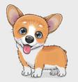 cute cartoon dog corgi vector image vector image