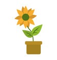 flower in pot icon image vector image vector image