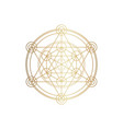 sucred geometry spirituality vector image vector image