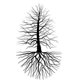 The tree and root vector image vector image