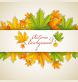autumn natural template vector image vector image