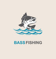 bass fish icon vector image
