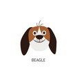 head and face a funny beagle dog with long ears vector image vector image