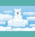 polar bear on an ice floe vector image