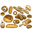 color hand drawn bread french loaf fresh bakery vector image vector image