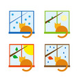 four season icon set with cat on a windowsill vector image