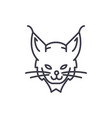 lynx head line icon sign on vector image