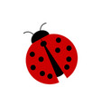 simple red ladybug vector image vector image